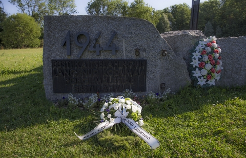 Sinimägede lahingus langenute mälestamine